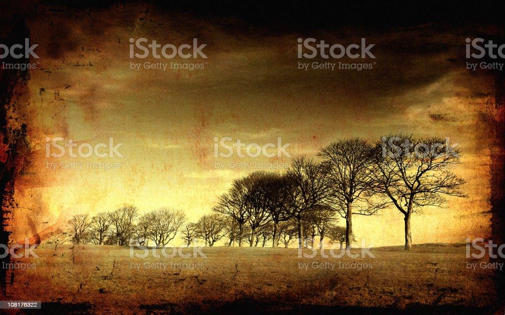 Trees vector art illustration