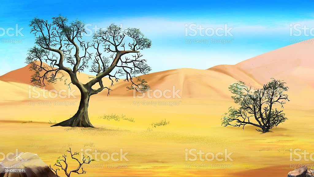 Trees on the Edge of the Desert vector art illustration