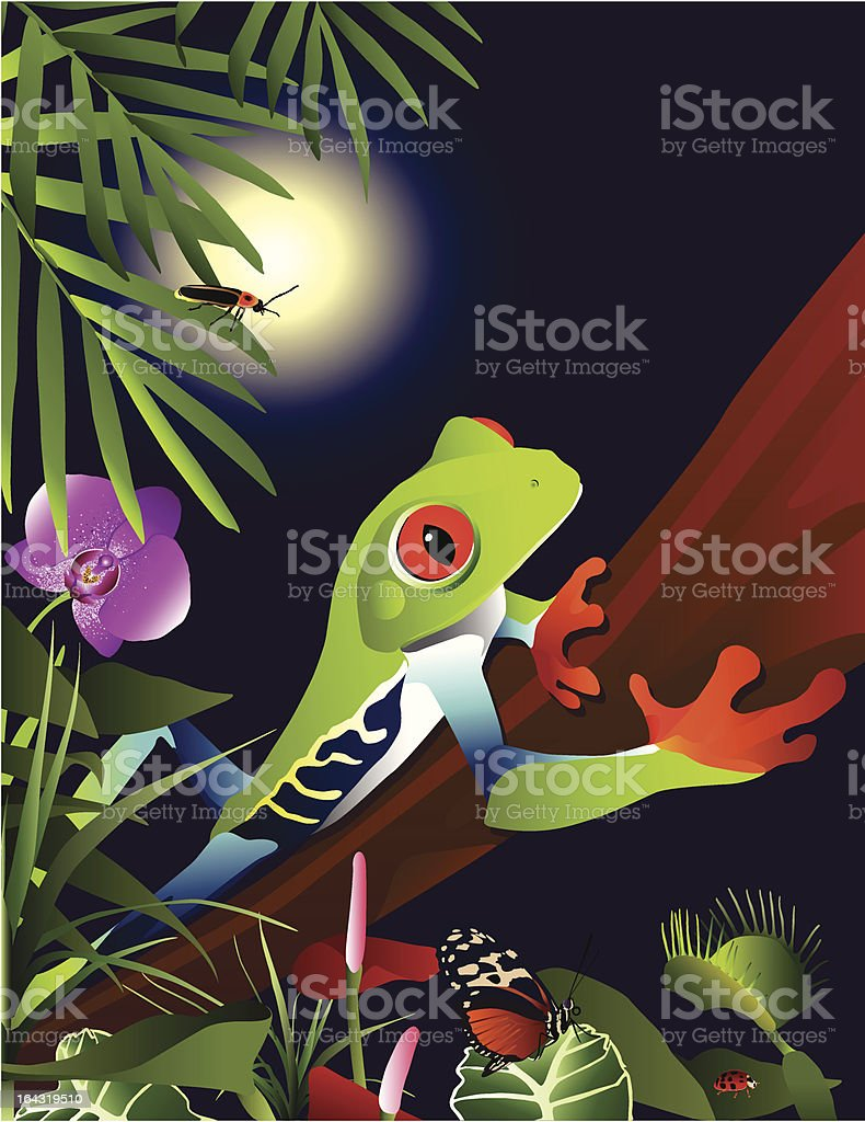 Tropical Adventure vector art illustration