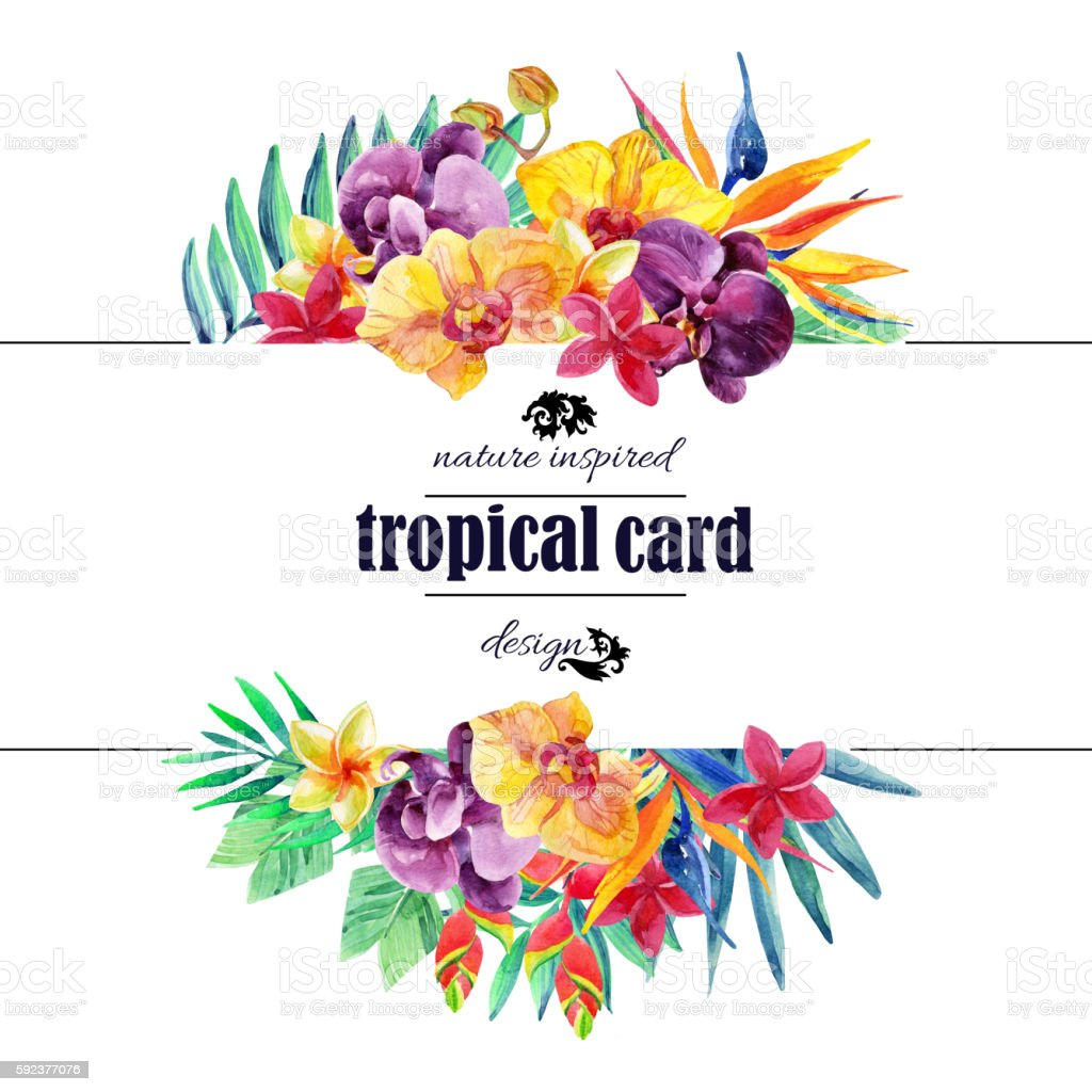 Tropical floral card in watercolor vector art illustration