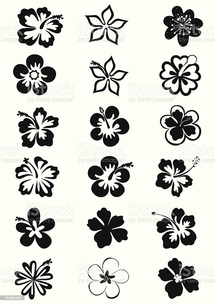 tropical flower's images vector art illustration