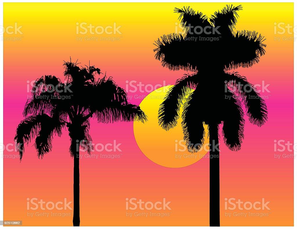 Tropical Palmtrees (Vector) royalty-free stock vector art