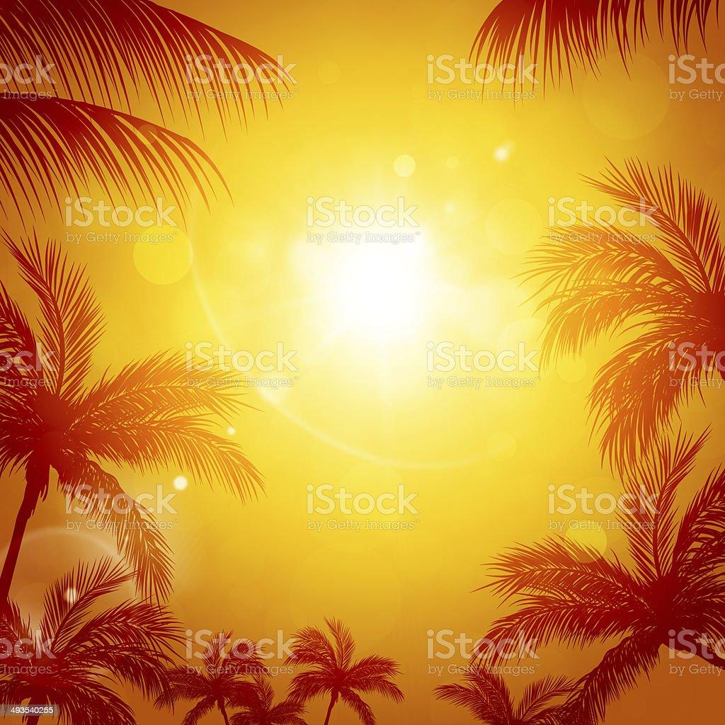 Tropical Sun among Palms royalty-free stock vector art