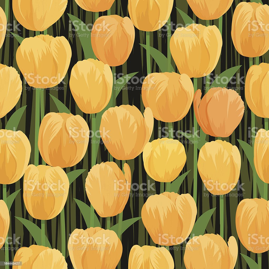 tulip flowers field seamless royalty-free stock vector art