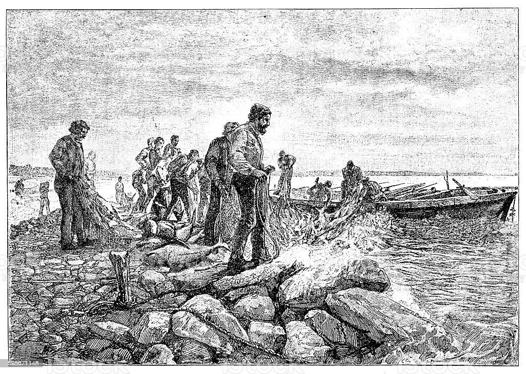 Tuna fishing vector art illustration