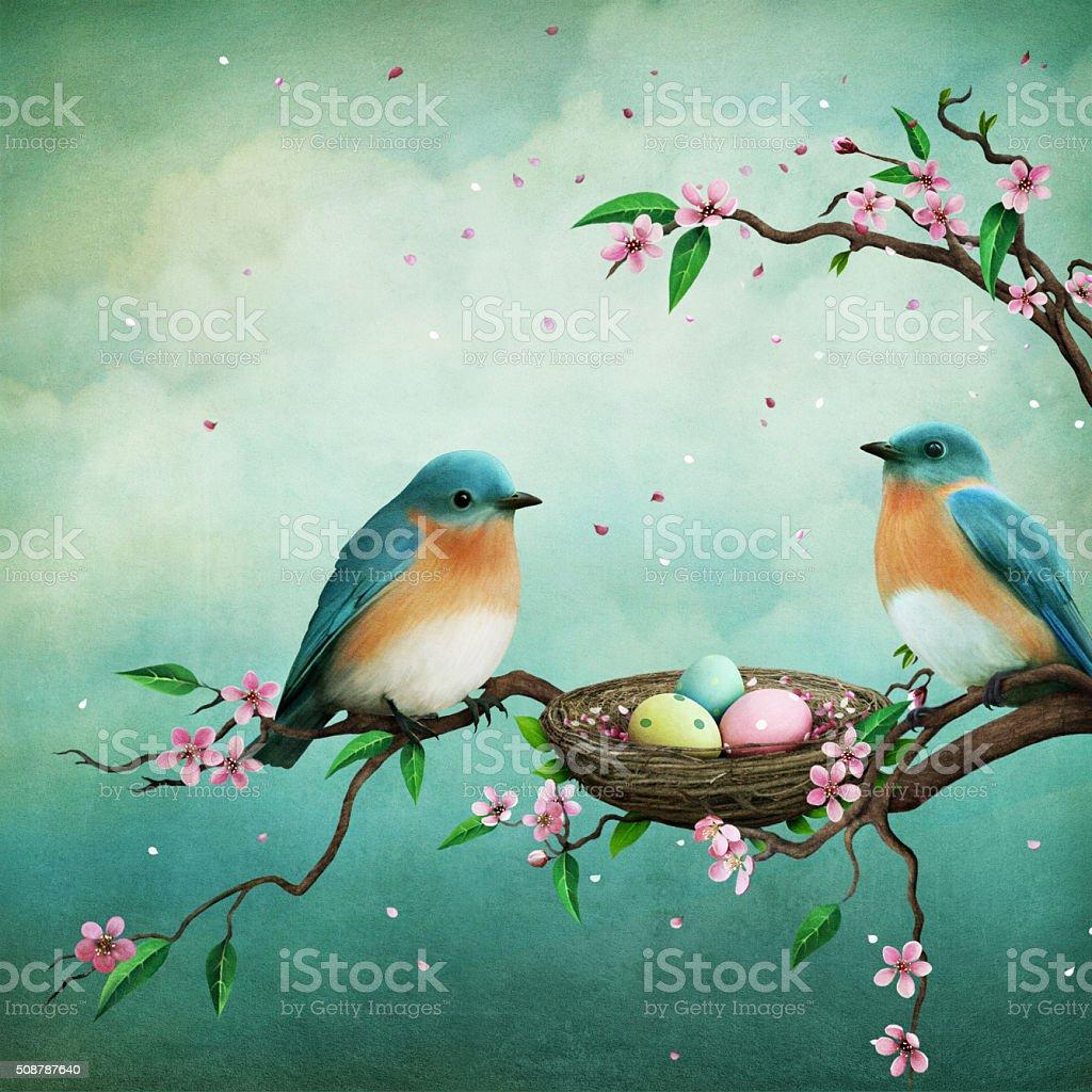 Two blue birds vector art illustration