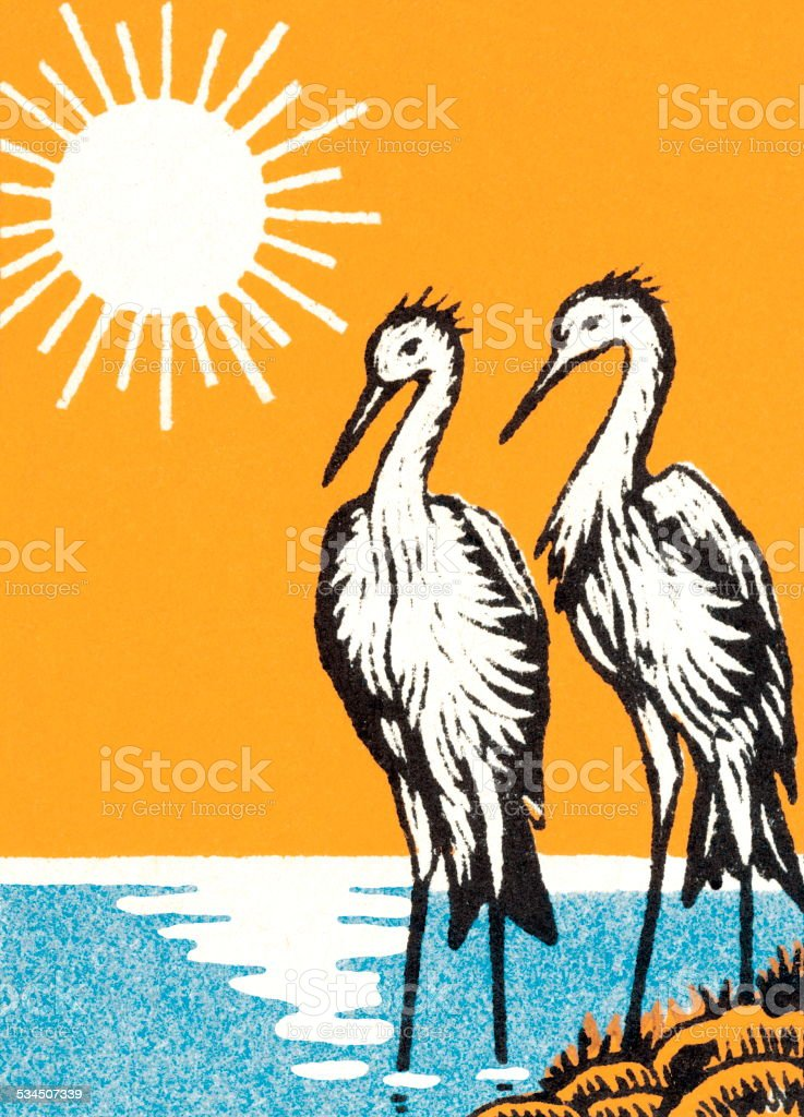 Two egrets vector art illustration