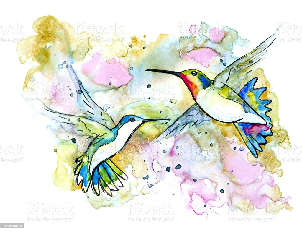 Two Hummingbirds in Flight vector art illustration