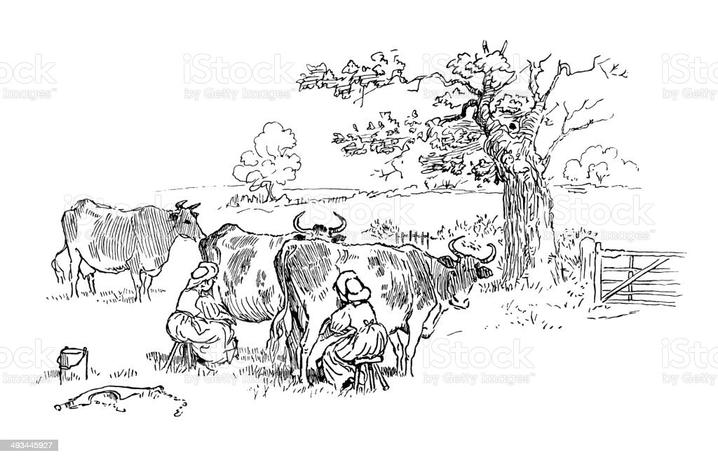 Two milkmaids milking cows in a field vector art illustration