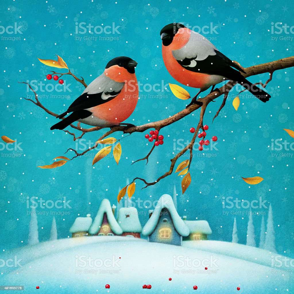 Two red birds vector art illustration