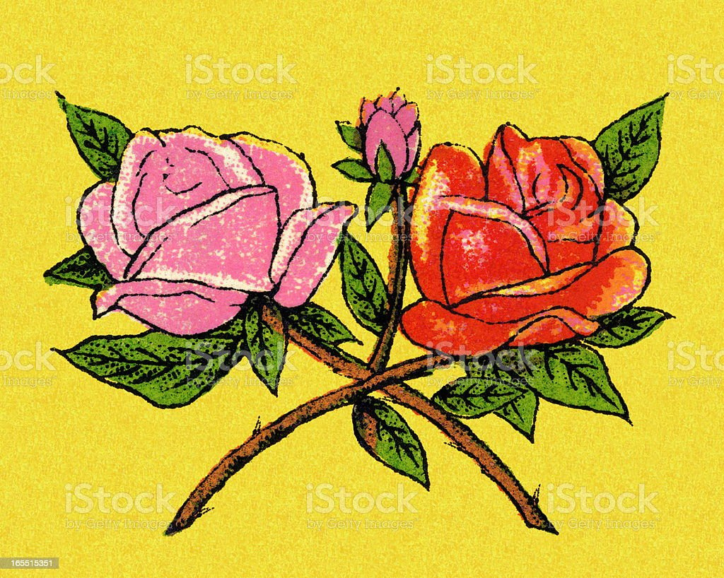Two Roses royalty-free stock vector art