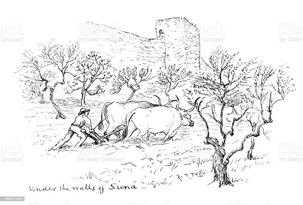 Under the walls of Siena vector art illustration