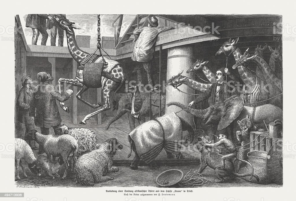 Unloading of African animals from a ship, published in 1874 vector art illustration