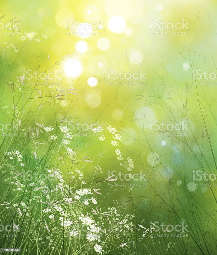 Upward shot of small white flowers in the green grass vector art illustration