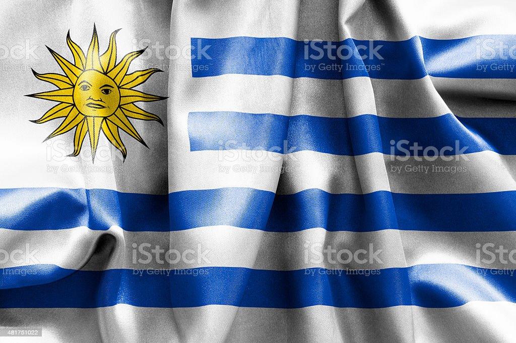 Uruguay Flag vector art illustration