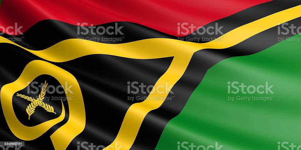 Vanuatu flag. royalty-free stock vector art