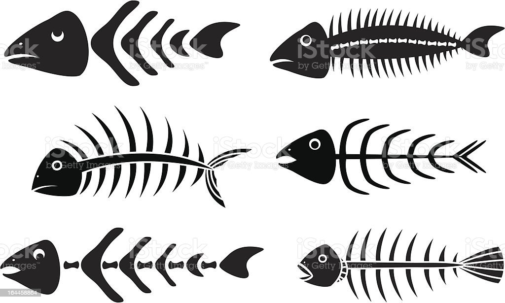 Various fishbones stencils vector art illustration