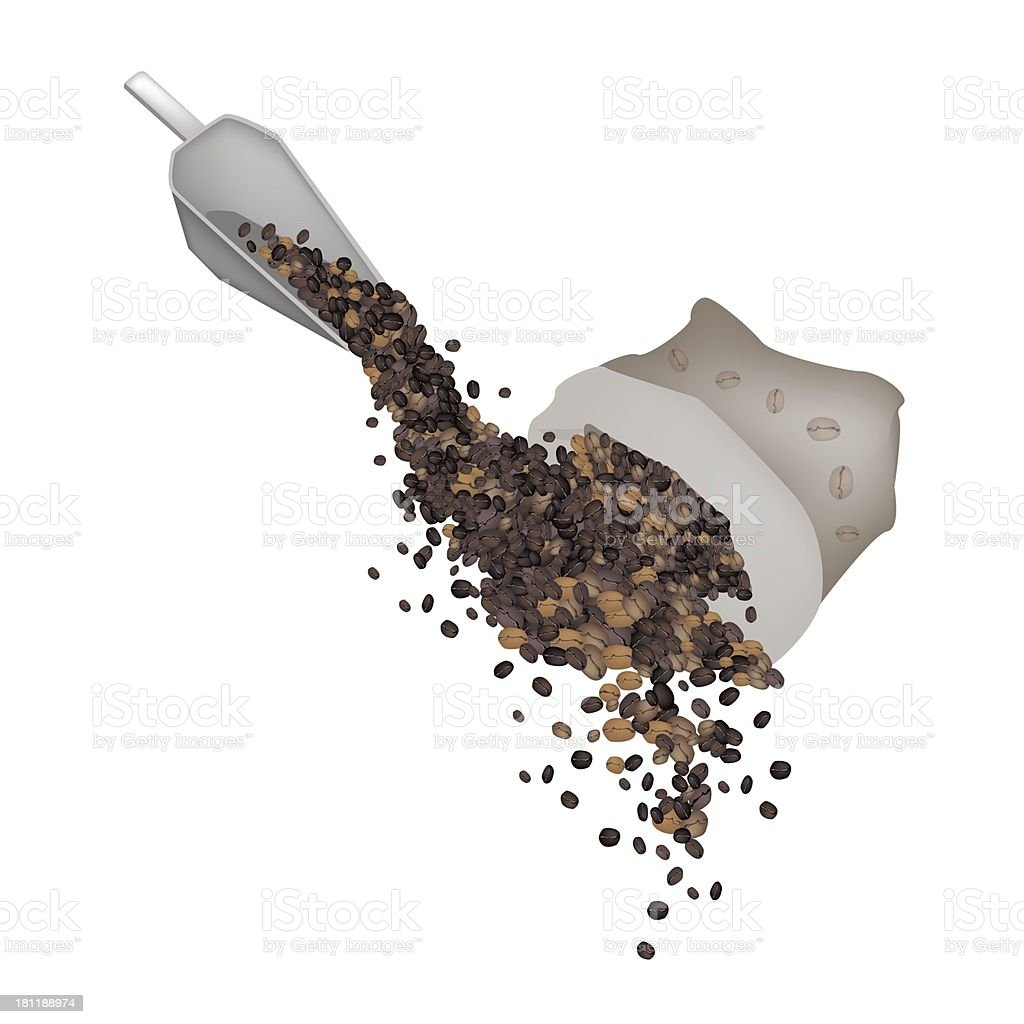 Various Kind of Coffee Beans Dropped from A Sack vector art illustration