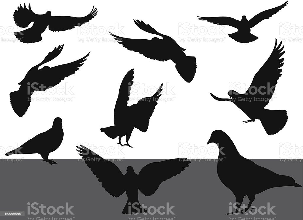 Vector doves silhouettes royalty-free stock vector art