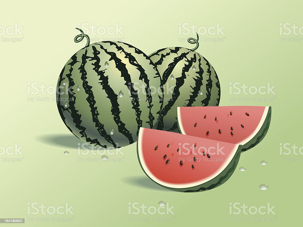 Vector dripping wet watermelons with red pulp royalty-free stock vector art