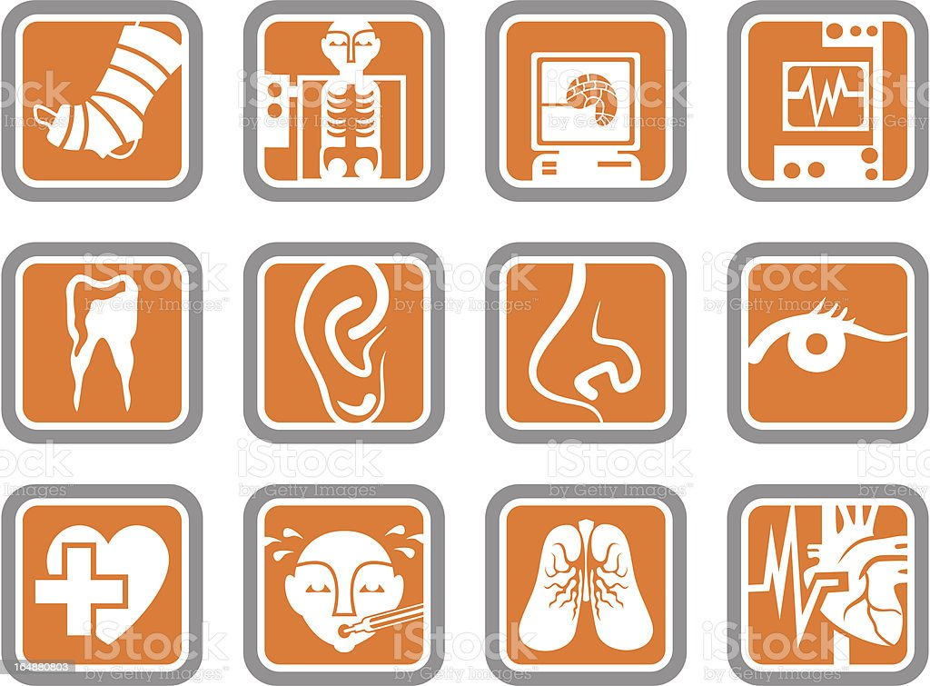 Vector Icons: Hospital Objects vector art illustration