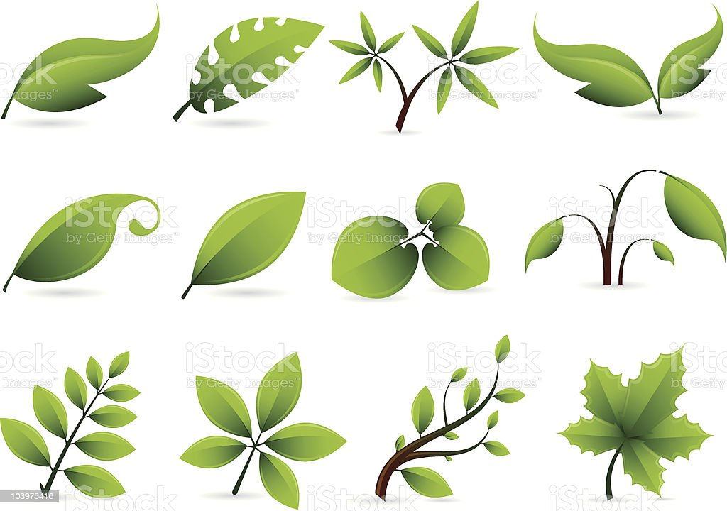 Vector Leaf Set royalty-free stock vector art
