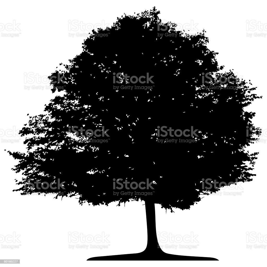 Vector Tree Isolated royalty-free stock vector art