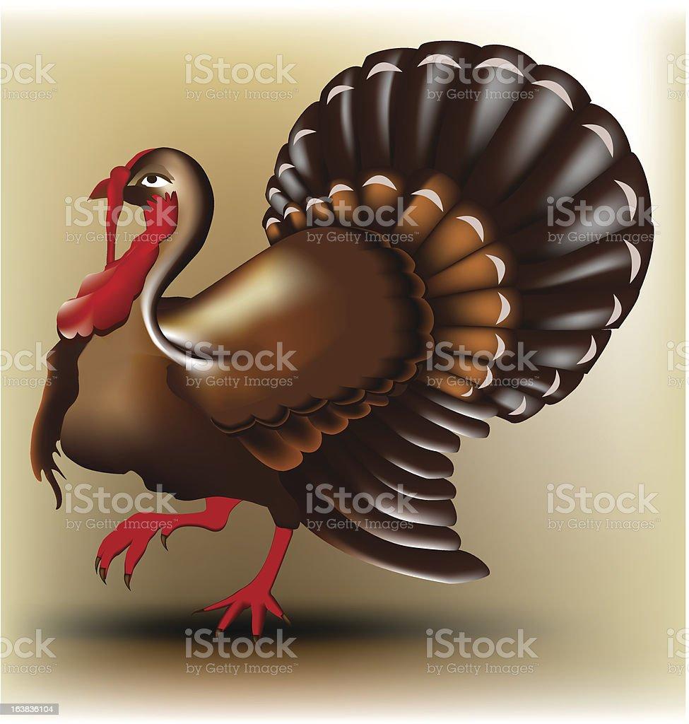 Vector turkey royalty-free stock vector art