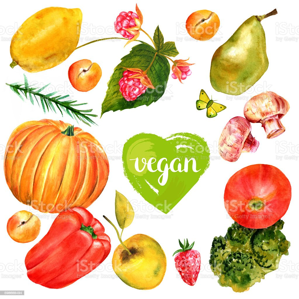 Vegan banner with watercolor food drawings and butterflies vector art illustration