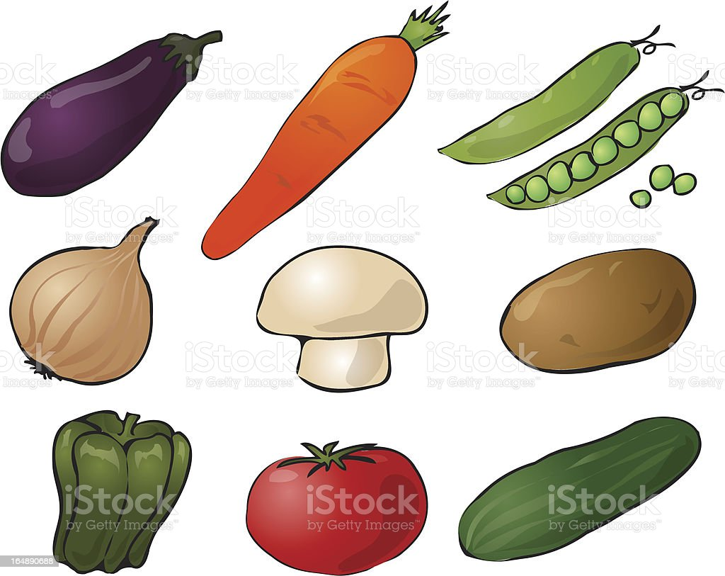 Vegetables illustration royalty-free stock vector art