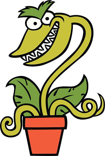 Venus Flytrap Clip Art, Vector Images & Illustrations - iStock