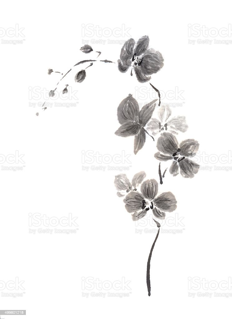 Vertical orchid branch Japanese style original sumi-e ink painting. vector art illustration