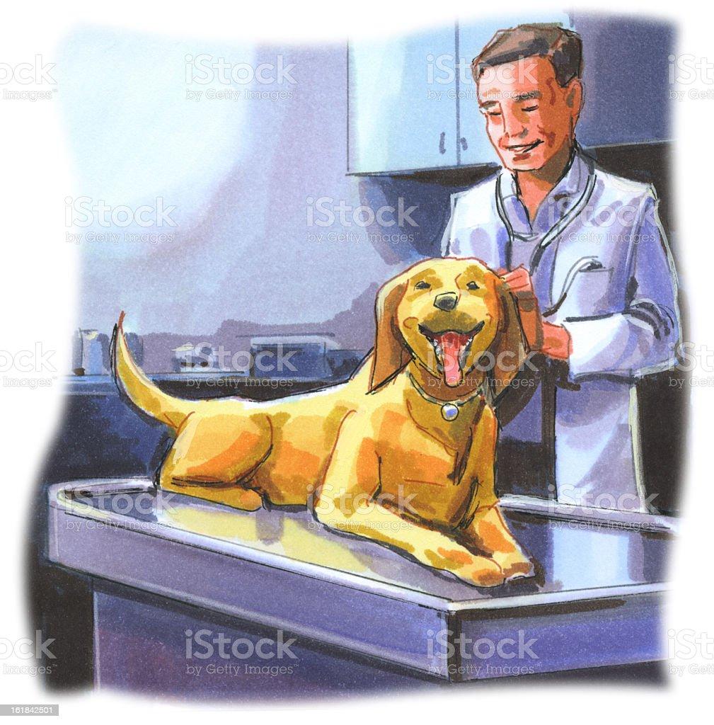 Veterinarian and Dog royalty-free stock vector art