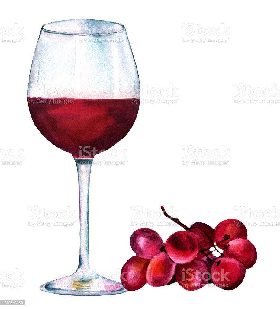 Vibrant watercolor drawing red wine glass with grapes vector art illustration