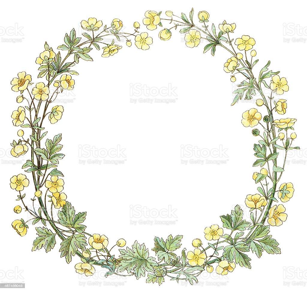 Victorian buttercup circular border vector art illustration