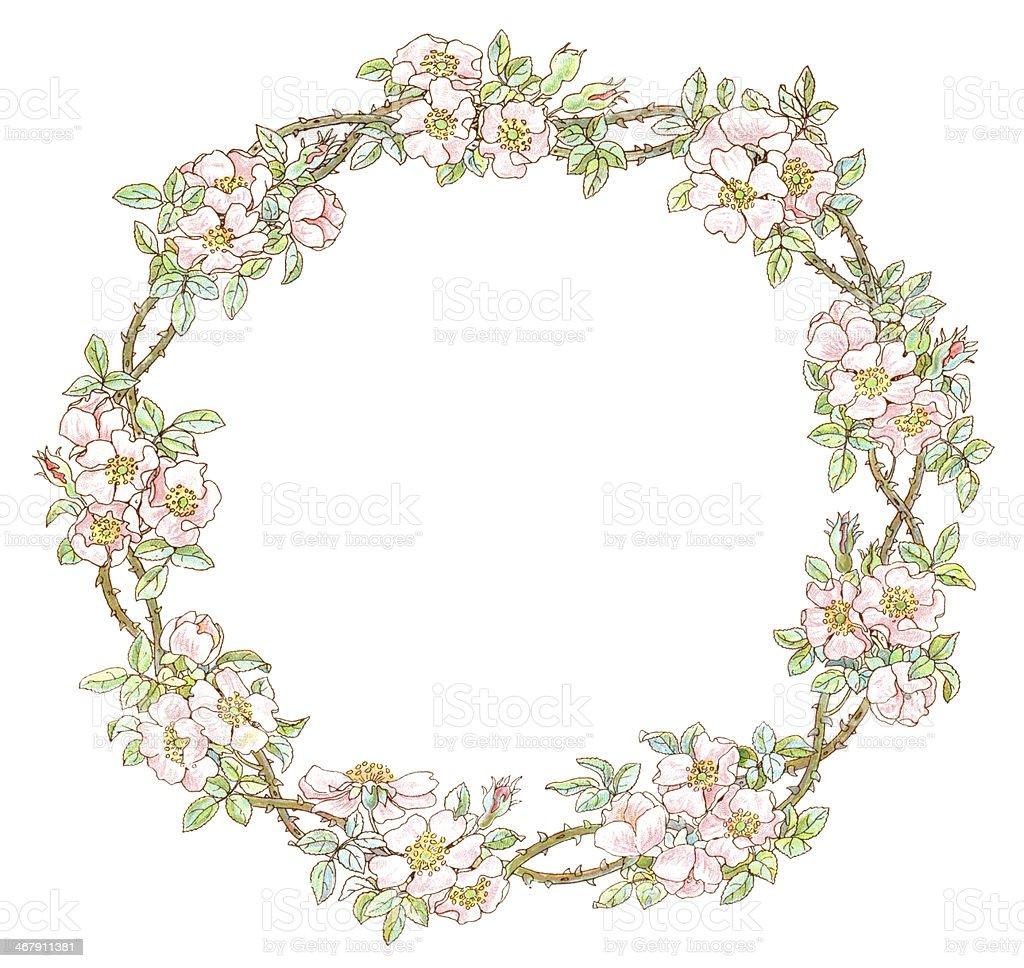 Victorian circular border of wild roses vector art illustration