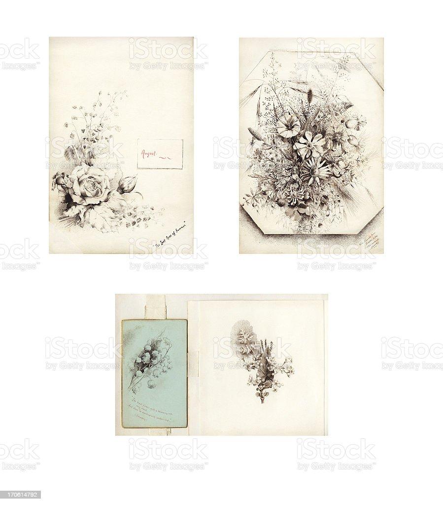 Victorian / Edwardian flower illustrations vector art illustration