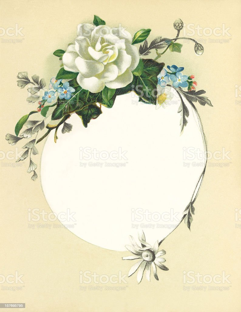 Victorian flower illustration with white rose royalty-free stock vector art