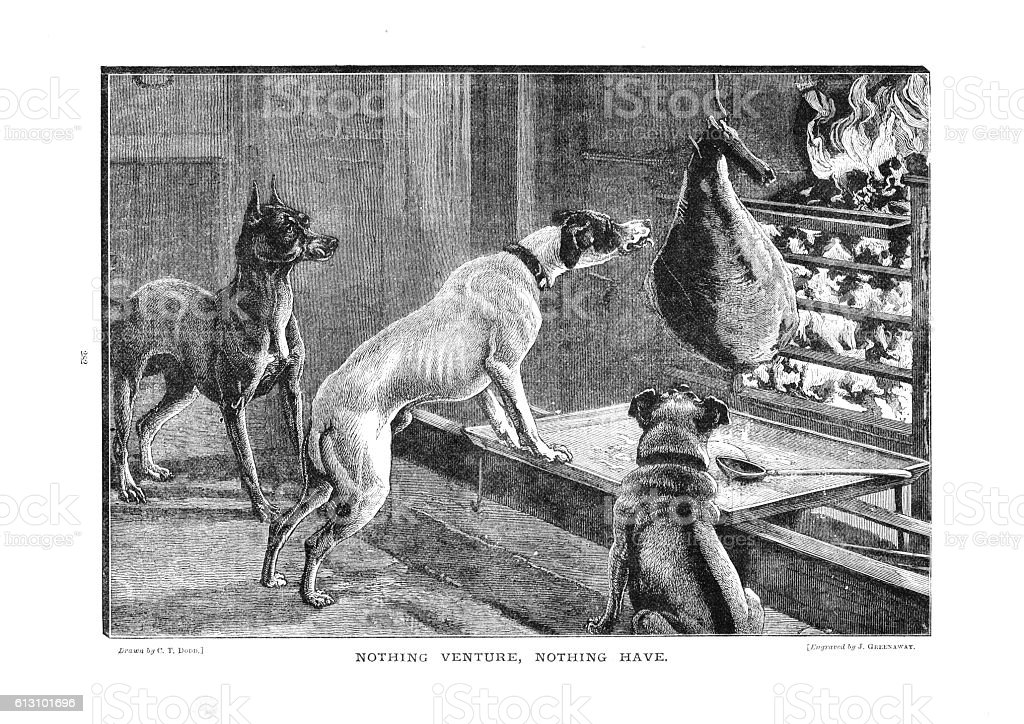 Victorian humorous illustration three dogs sniffing meat joint roasting fire vector art illustration