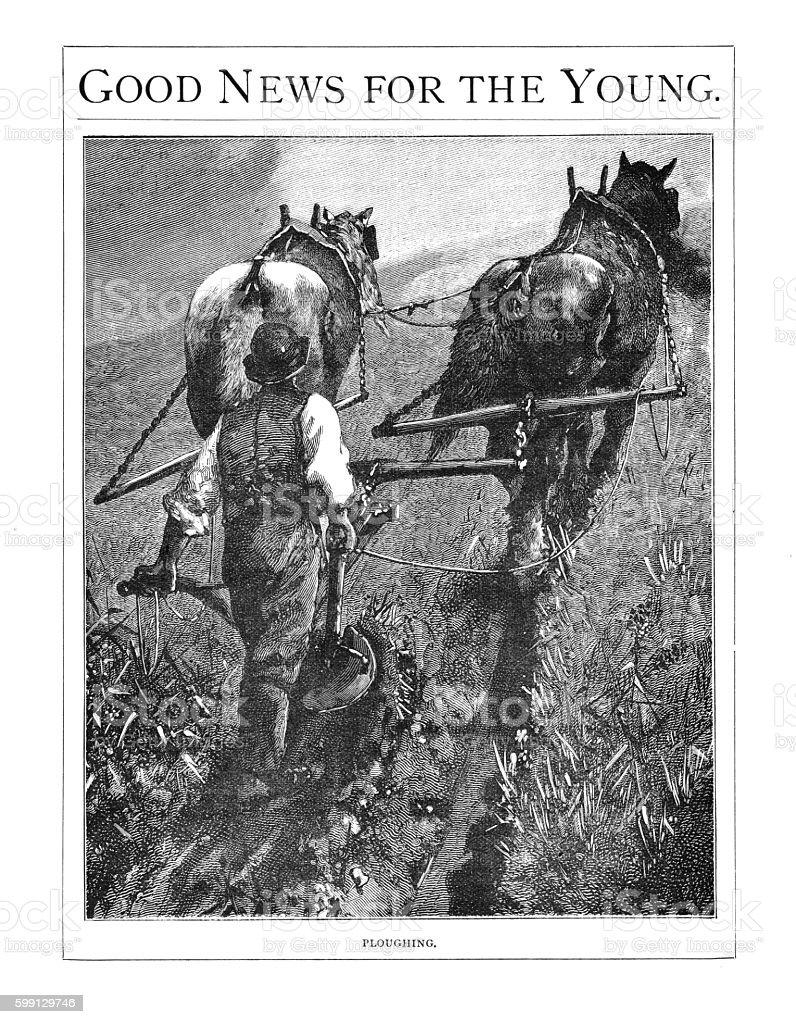 Victorian illustration farmer walking behind two farm horses ploughing vector art illustration
