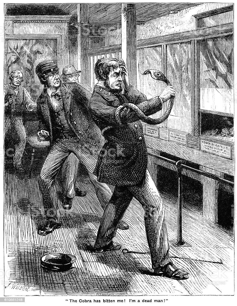 Victorian man who has been bitten by a cobra vector art illustration