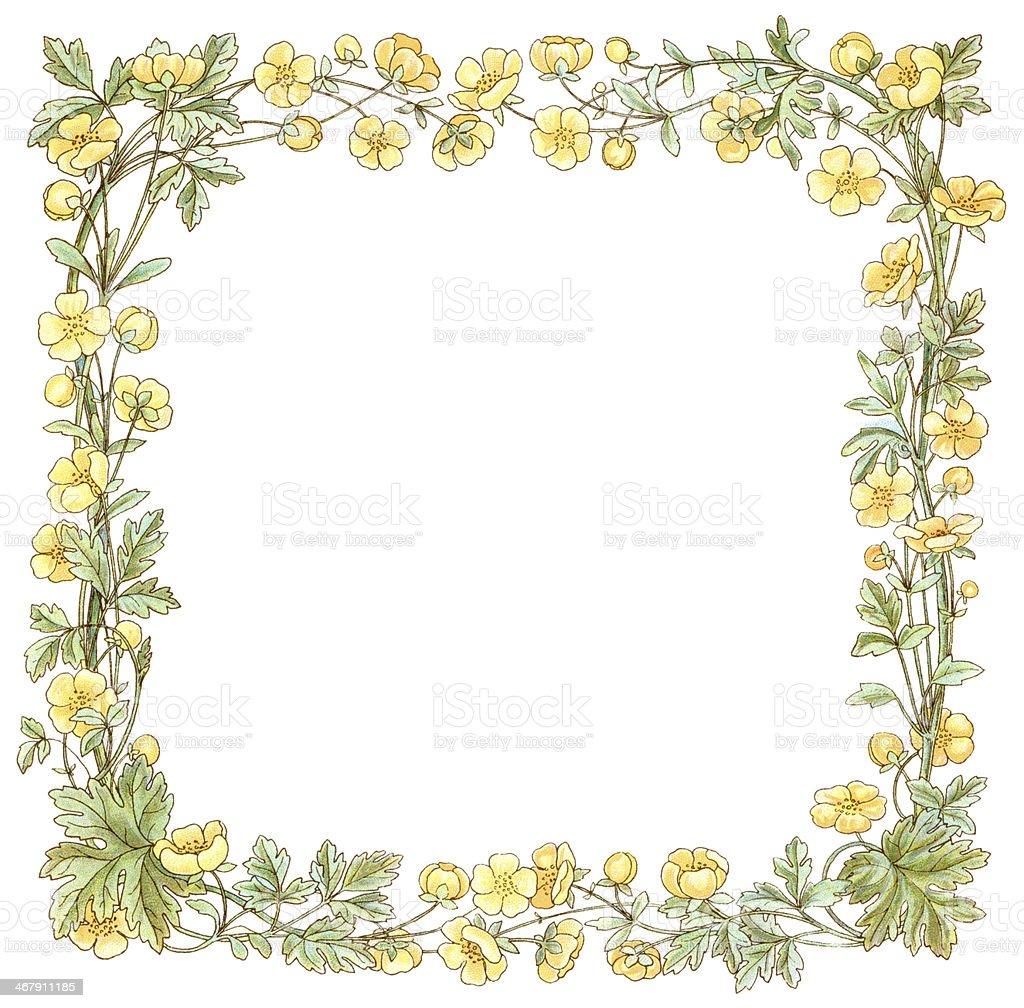 Victorian square buttercup border vector art illustration