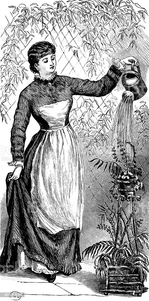 Victorian woman watering a plant vector art illustration