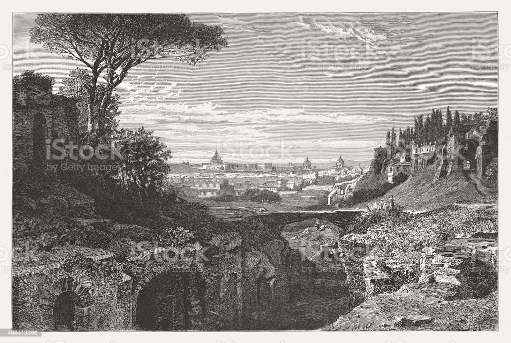 View of Rome from the Palatine Hill, published in 1878 vector art illustration