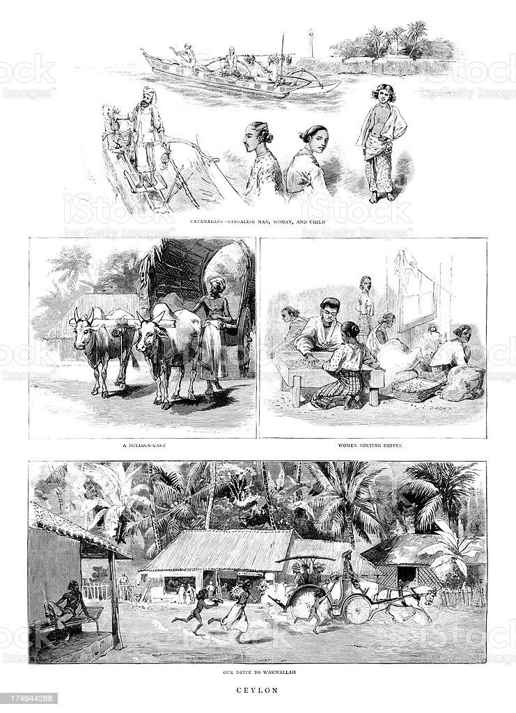 Views of Victorian Ceylon (Sri Lanka) royalty-free stock vector art