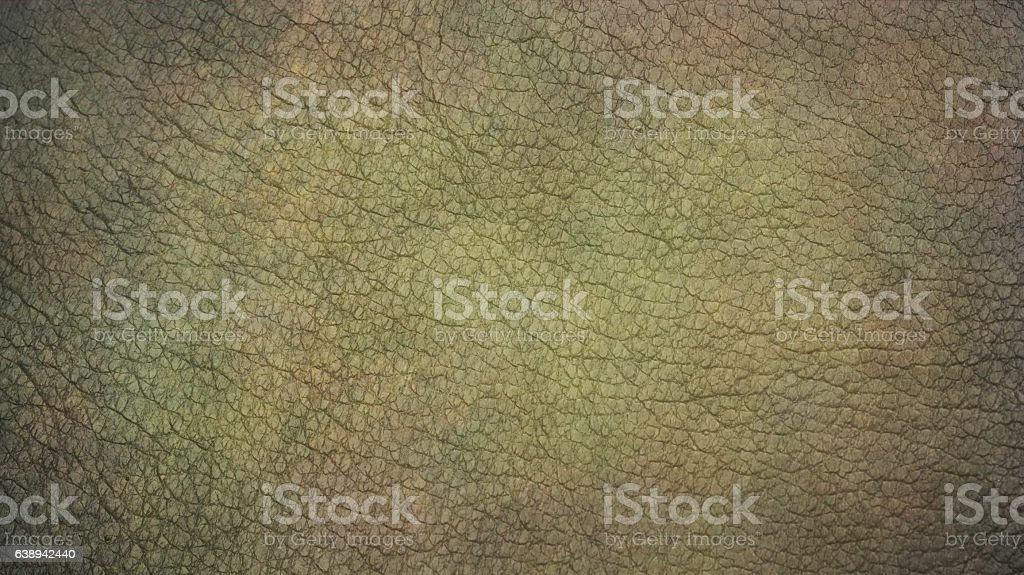 Vignetting Brown Green animal skin background vector art illustration