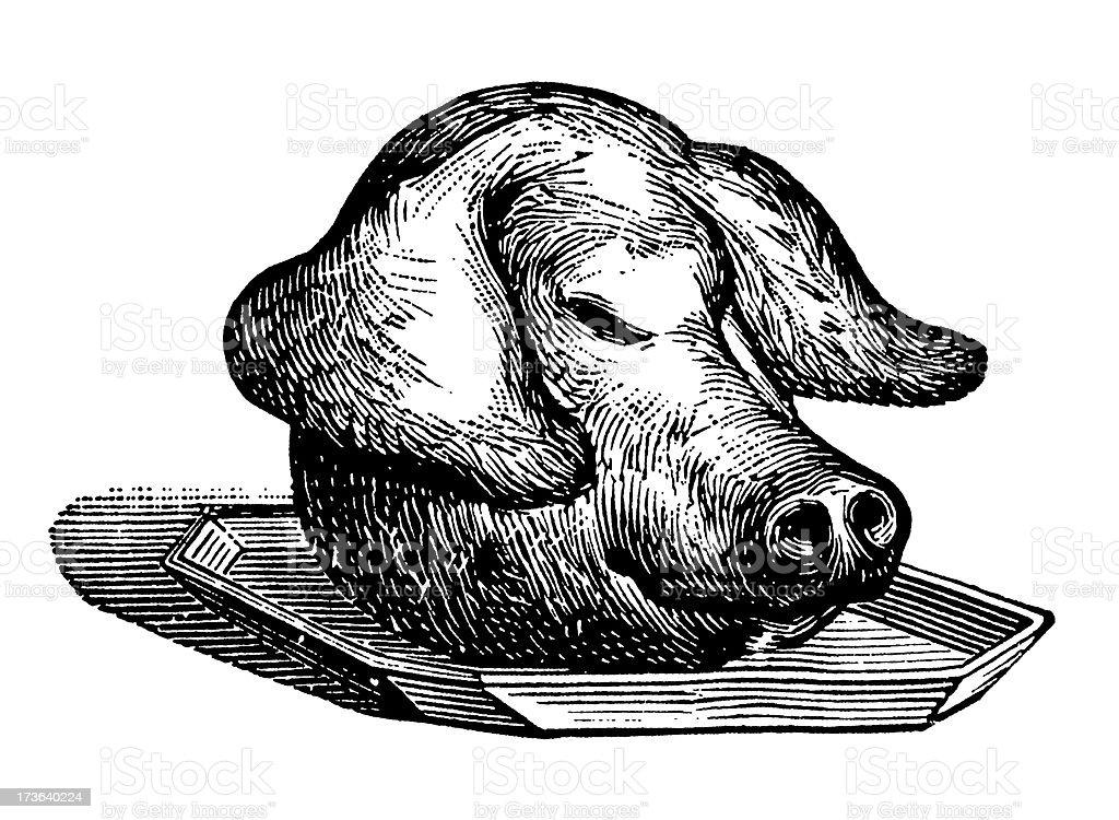 Vintage Clip Art and Illustrations | Pig Head on Tray vector art illustration