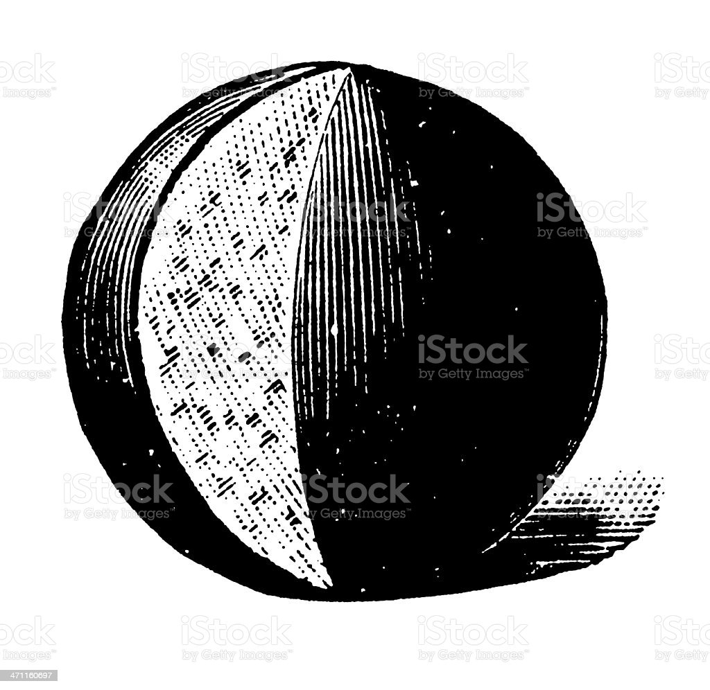 Vintage Clip Art and Illustrations | Round Cheese vector art illustration