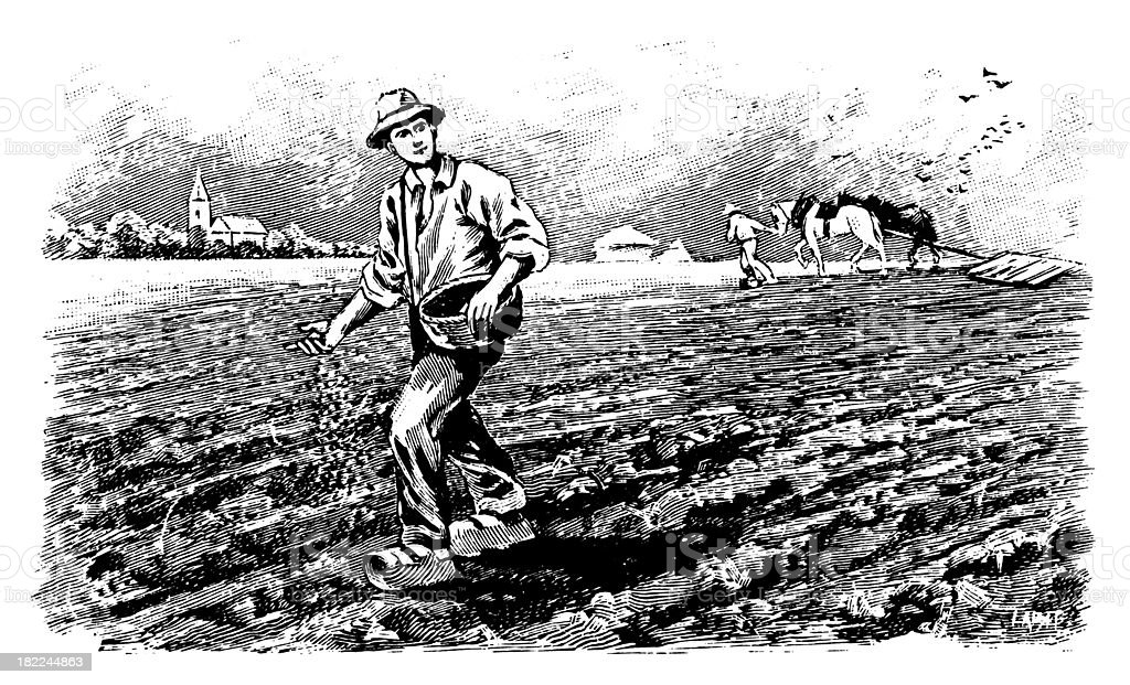 Vintage drawing of farmer planting crops royalty-free stock vector art