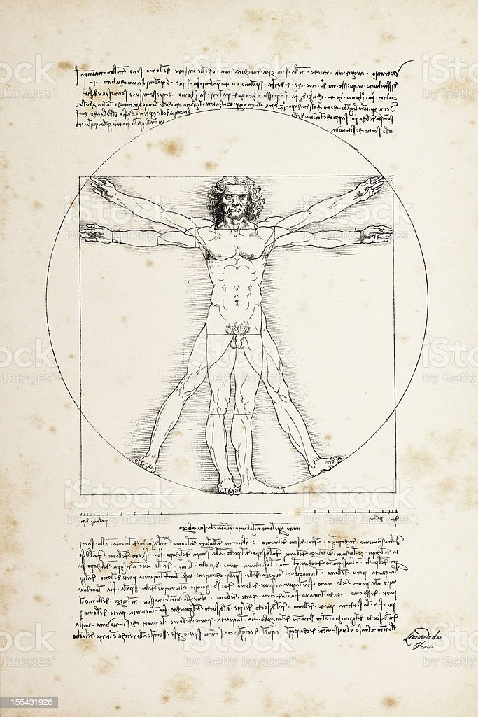 Vitruvian man painted by Leonardo da Vinci from 1492 royalty-free stock vector art